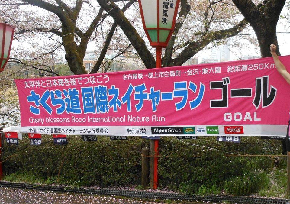 Japán: Sakura Michi összefoglalva
